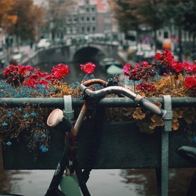 Nederland (064)